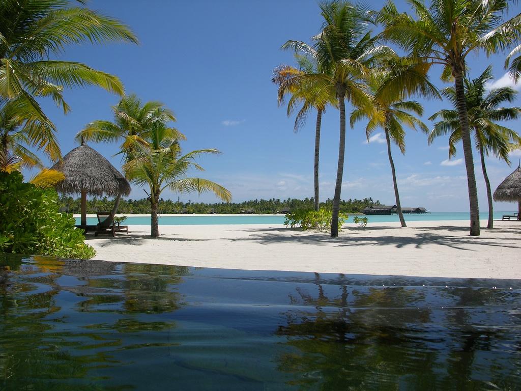 Big atoll kaafu severnyy male 38