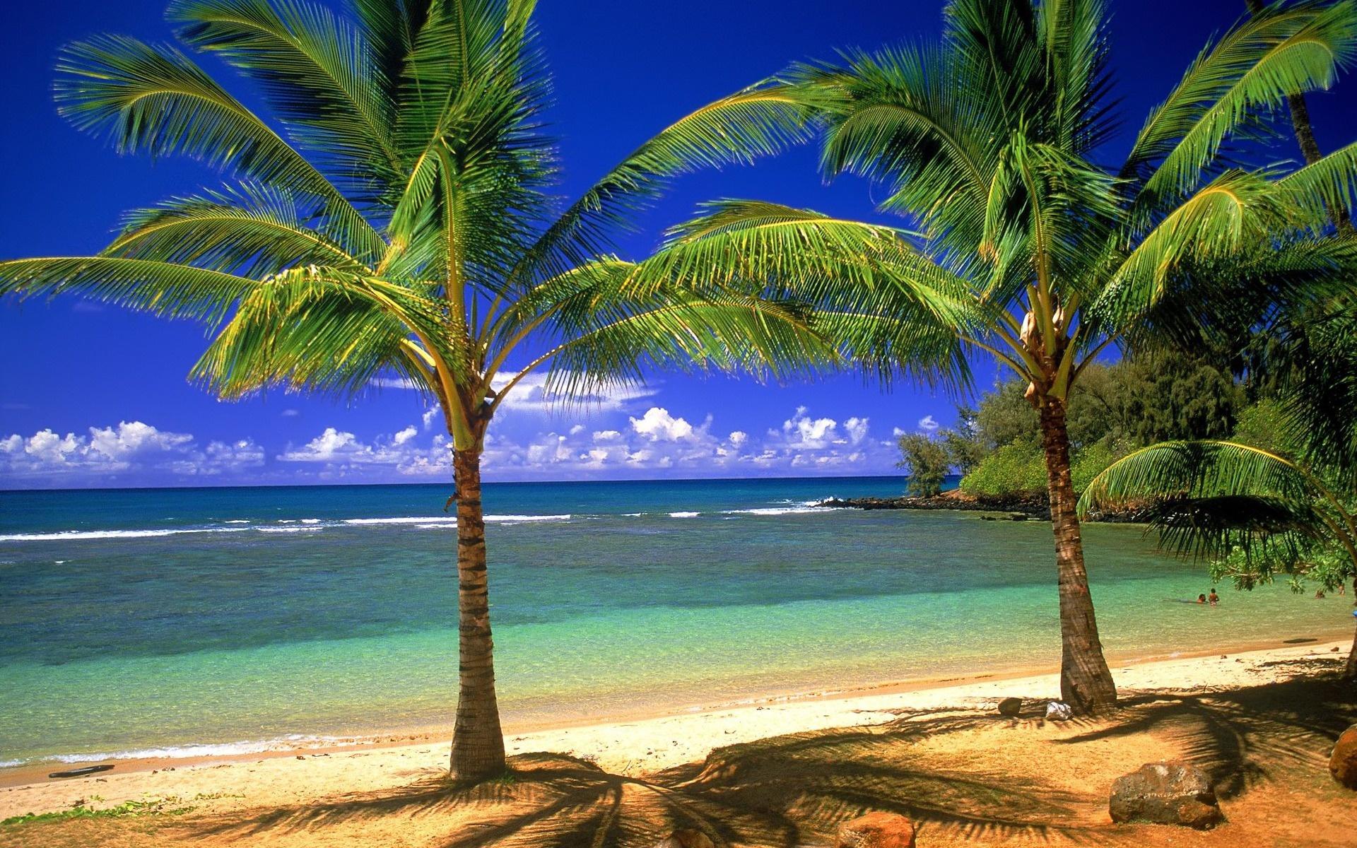 Big plyazhi ostrova sentoza